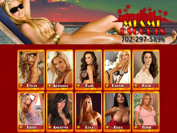 The top escort service in Miami and South Beach